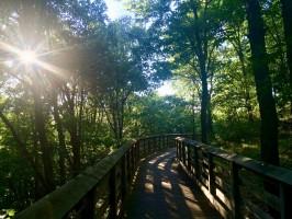 black-river-falls-rest-area-trail