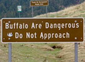 Sign that says Buffalo are dangerous. Do not approach.